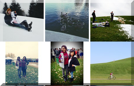 Mooney's Bay collage of popular photos