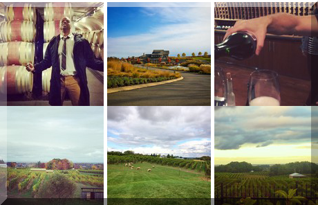 Tawse Winery collage of popular photos