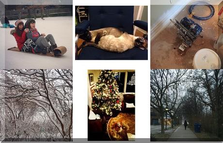 Eglinton Park collage of popular photos