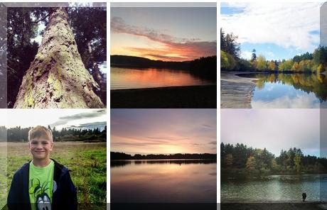 Beaver Lake collage of popular photos